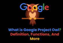 What is Google Project Owl? – Definition, Functions, And More